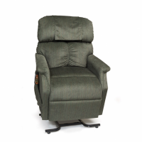 Photo of Comforter lift chair in Evergreen. thumbnail