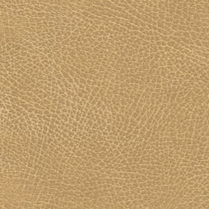 Photo of Buckskin lift chair fabric.